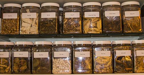Chinese Herbal Medicine Pharmacy